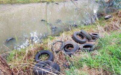 Chemicals in tyres – the new PFAS?